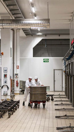 At Hero factory, these two men are working by the light of Philips food industry lighting